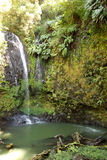 Jungle waterfall in northern Madagascar Royalty Free Stock Photography