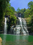 Jungle Waterfall. Waterfall and lake in the jungle Royalty Free Stock Photo