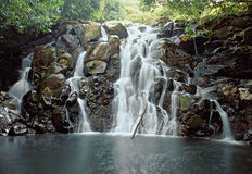 Jungle waterfall royalty free stock images