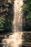 Jungle Waterfall Stock Photos