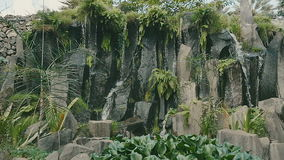 Jungle waterfall cascading down a rocky. stock video footage