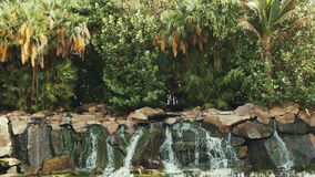 Jungle waterfall cascading down a rocky. Tropical. stock footage