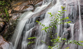 Jungle Waterfall III Stock Photos