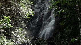Jungle waterfall in national park stock video