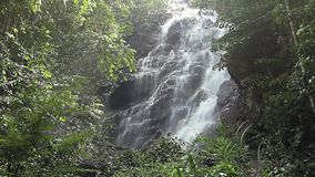 Jungle waterfall in national park stock video footage