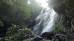 Jungle waterfall in national park stock footage