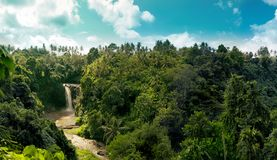 Jungle waterfall panorama in amazonian tropical rainforest. Waterfall panorama in amazonian tropical rainforest with big river in the middle of jungle royalty free stock images