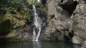 Jungle waterfall pool rock trees. Brook stock footage