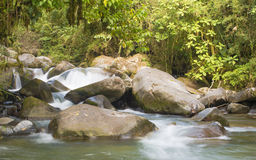Jungle Waters. A beautiful river in the Talamanca mountains of Costa Rica runs pure and swift Stock Photos