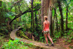 Jungle woman hiking Stock Images