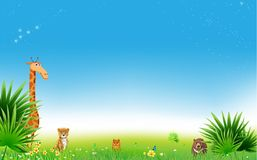 Jungle or Zoo Themed Animal Background. Field of fresh green grass palm, flower, and blue sky with stars Stock Photos