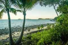 Jungleand ocean in mission beach, Queensland, Australia royalty free stock photo
