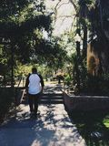 Jungles in California. A day spent in Balboa Park Stock Photo