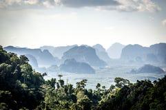 Jungles en Thaïlande Photographie stock