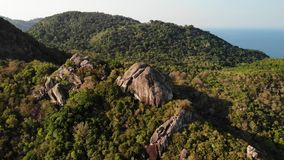 Jungles and mountains of tropical island. Drone view of green jungles and huge boulders on volcanic rocky terrain of Koh. Tao Island on sunny day in Thailand stock video