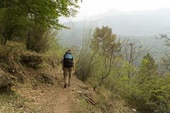 Hiking in Nepal jungle forest. Jungles of Nepal trek in tourism asia travel Royalty Free Stock Image