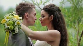 Jungvermählten, die auf dem Hintergrund der Natur küssen stock video footage