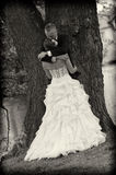 Jungvermählten im Park Stockfotografie