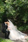 Jungvermählten-Paare im Park Stockfoto