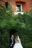 Jungvermählten valentynes Paare mit dem Rosenblumenstrauß, der nahe Rebe c aufwirft Stockfotos