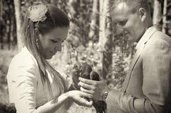 Jungvermähltenpaare mit Taube Stockbild