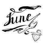 Juni-aardbeien die vector van letters voorzien Royalty-vrije Stock Afbeelding
