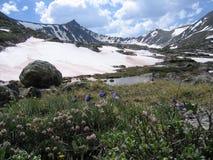 Juni in Kolorado Stockbilder