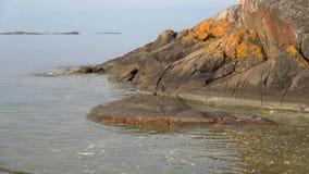 Juni morgon på klipporna i Hanko finland lager videofilmer