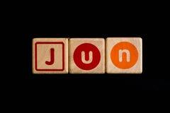 Juni på wood kubik på svart bakgrund Fotografering för Bildbyråer
