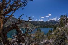 Juni sjö- och Juni berglandskap Royaltyfria Foton