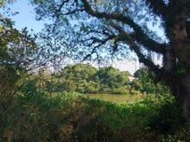 27. Juni 2018 tun Ansicht des ParaÃba Sul-Fluss, Sao Paulo, Brasilien, an einem ruhigen Tag stockbilder