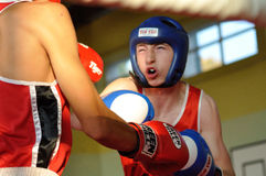 Junior boxing tournament Stock Photo
