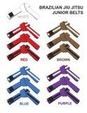 Junior Brazilian Jiu Jitsu Belts illustration Arkivbild