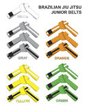 Junior Brazilian Jiu Jitsu Belts Illustration. Royalty Free Stock Photos