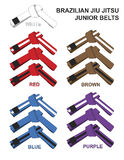 Junior Brazilian Jiu Jitsu Belts Illustration. Stock Photography