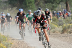 Junior Cyclocross Racers Stock Image