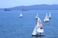 Junior European Championship sailing race Royalty Free Stock Photography