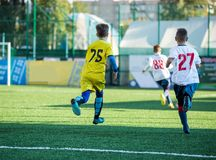 Junior football match. Soccer game for youth players. Boys in yellow and white uniform playing soccer match. Football stadium stock images