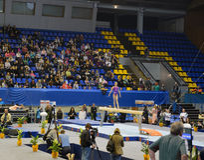 Junior gymnast performing on balance beam Royalty Free Stock Photos