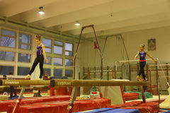 Junior gymnasts in training Royalty Free Stock Image