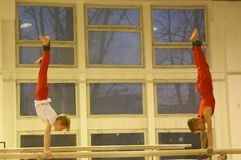 Junior gymnasts in training Royalty Free Stock Photo
