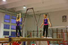 Junior gymnasts in training Stock Image