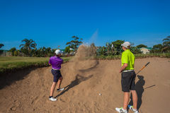 Junior Players Sand Shots Golf Practice  Stock Photo