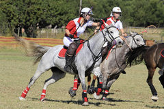 Junior Polocrosse Players Stock Image