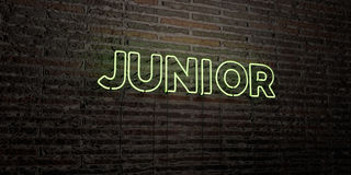 JUNIOR -Realistic Neon Sign on Brick Wall background - 3D rendered royalty free stock image Royalty Free Stock Photography