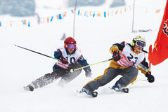 Junior skiers Royalty Free Stock Photography