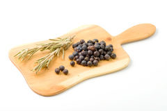 Juniper berries Stock Images