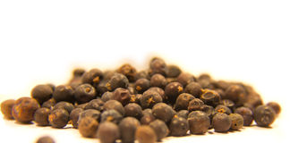Juniper Berries Stock Image