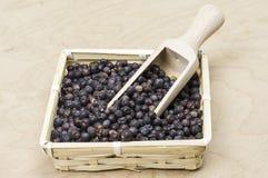 Juniper berries in a basket Stock Photos