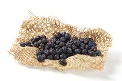 Juniper Berries On Burlap Royalty Free Stock Photo